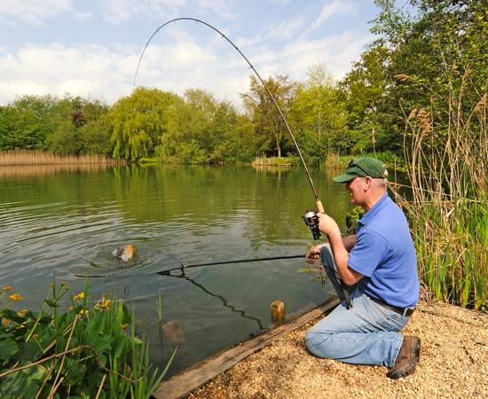 Матчевая удочка для летней рыбалки